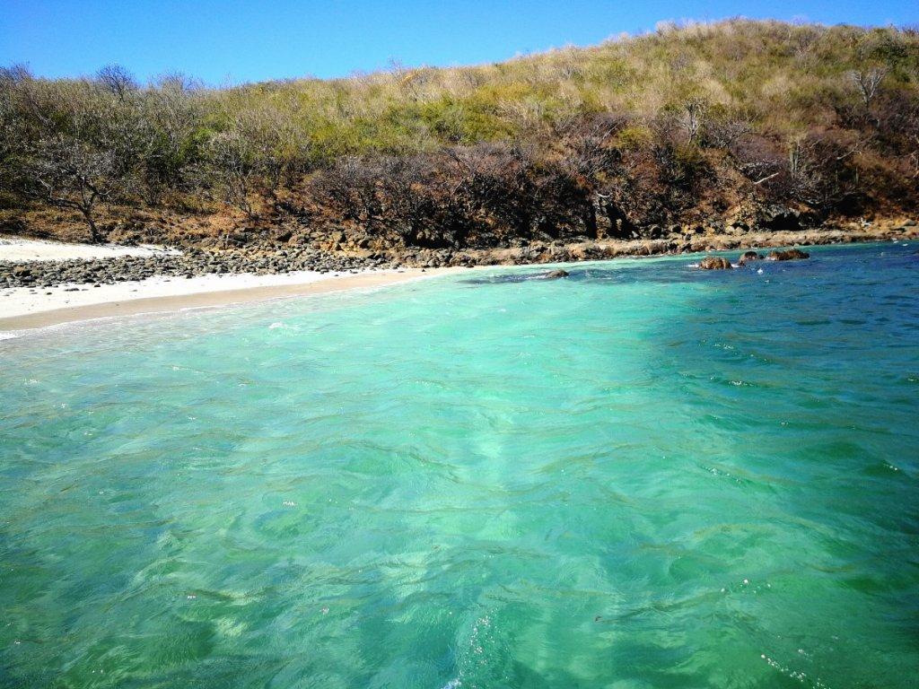 playa virgen jicote costa rica